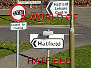 Image link to World of Hatfield feature